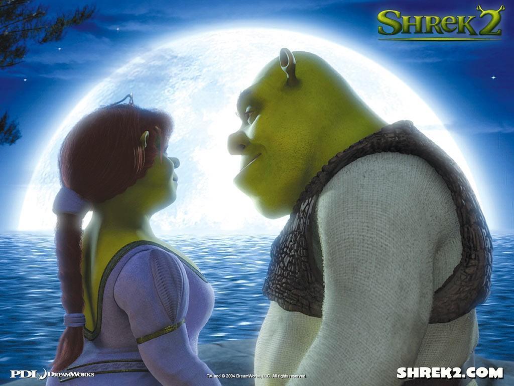http://2.bp.blogspot.com/_-wPz8gHnvnI/S8RlShC5clI/AAAAAAAAABs/Rj1_xDj_fHY/s1600/Princess-Fiona-and-her-husband-Shrek-princess-fiona-1460273-1024-768[1].jpg